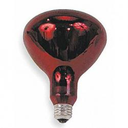 37771 INCANDESCENT LAMPS
